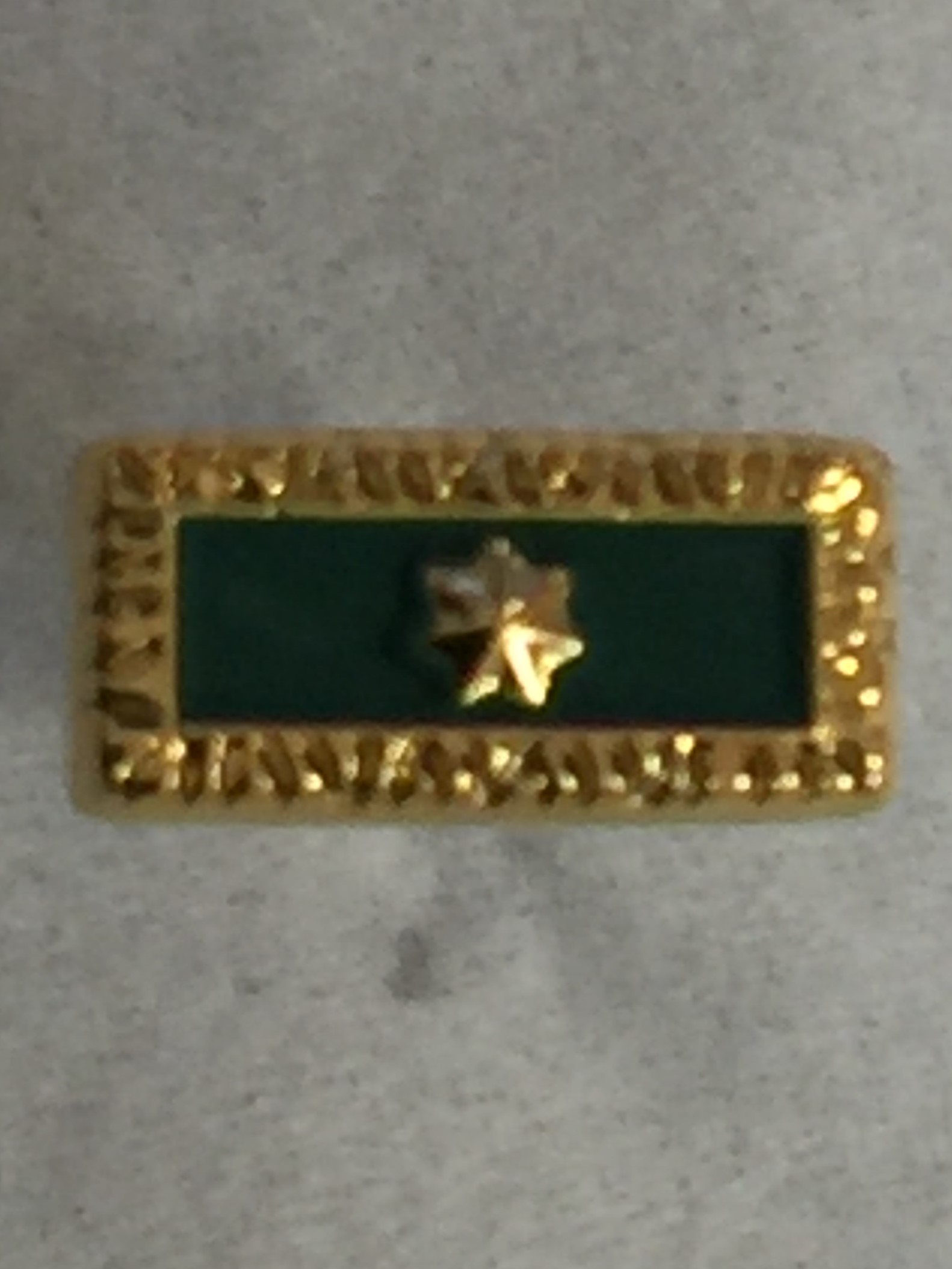 Citation Lapel Pin CP 2